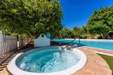 Vakantiehuis met pool en jacuzzi - ideaal geschikt voor groepen