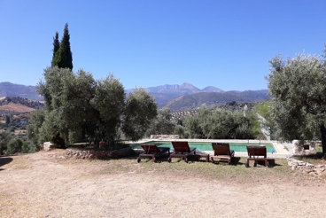 Holiday Home with garden and Wifi in Algodonales